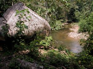 Quebrada-Ucayali
