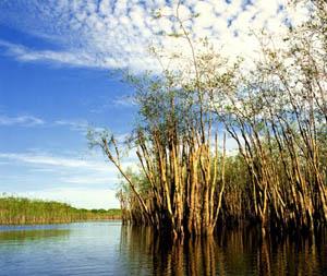 laguna Pasiba